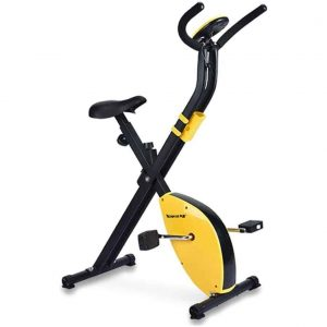 TechSport Spin Exercise Bike